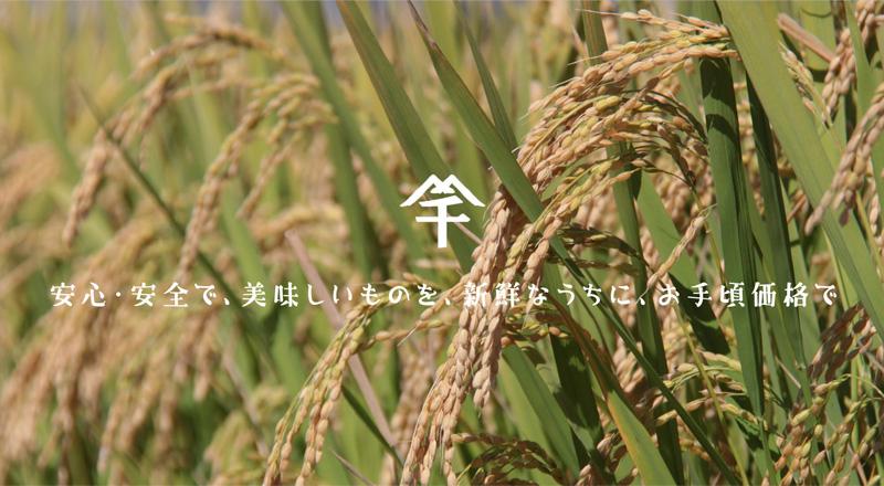オヤマ・アグリサービスではお米の生産から販売までを自社でおこなっています。